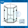 DDGH003-High Quality Brass Glass to Glass Hinges for Glass Shower Door